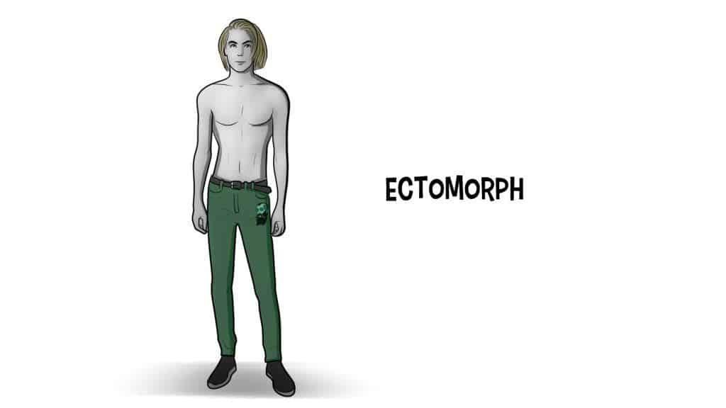 poate ectomorphs pierde cu ușurință grăsime