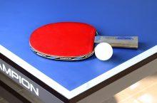 Cea mai bună masă de tenis 2021 – Păreri, sfaturi și recomandări
